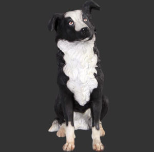 H-80070 Border Collie - Bordercollie