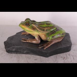 H-100002 Frog Green Bell on Rock - Kikker