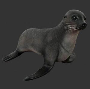 H-100094 Baby Fur Seal - Zeeleeuw