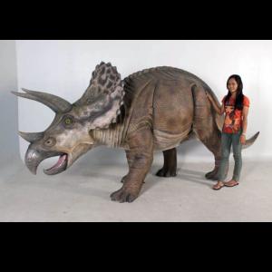 H-100048 Triceratops - Dinosaurus