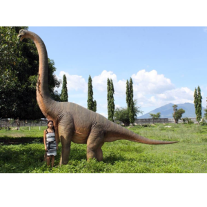 H-100055 Brachiosaurus  - Dinosaurus