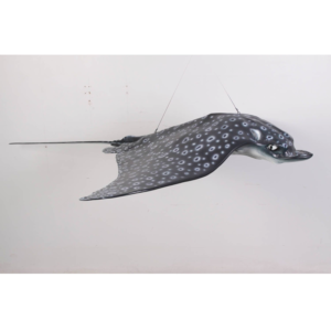 H-100060 Spotted Eagle Ray - Rog