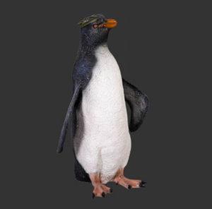 H-100067 Penguin Rock Hopper - Pinguin