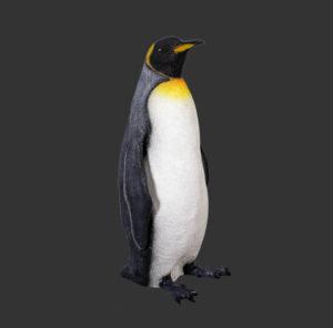 H-100068 King Penguin - Koning Pinguin