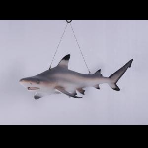 H-100074 Shark Tip Reef Black - Haai