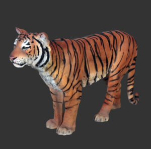 H-100078 Sumatran Tiger - Sumatraanse Tijger