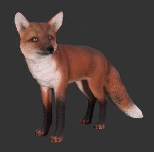 H-100103 Red Fox - Rode Vos