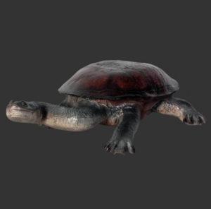 H-100114 Turtle Long Neck - Schildpad