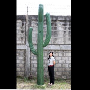 H-110022 Cactus XXL - Kaktus