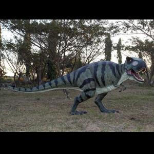 H-110073 Walking T-Rex  - Dinosaurus