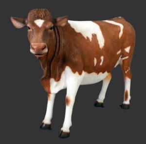 H-120003 Guernsey Cow - Koe