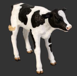 H-120076 New Born Calf - Kalf