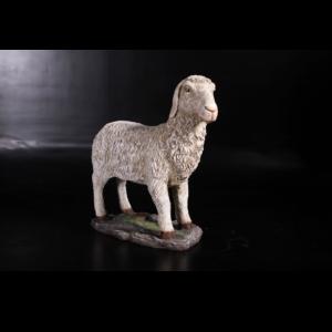 H-140024 Standing Sheep - schaap