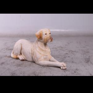 H-150251 Labrador Yellow Lying Down
