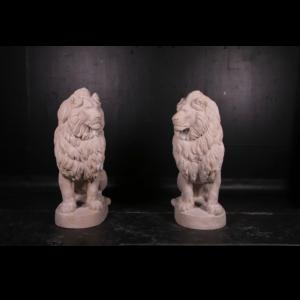 H-160274 Lion Sitting RS - Leeuw