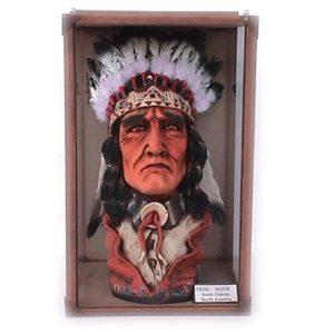 1669 Head Sioux Tribe - Indiaan