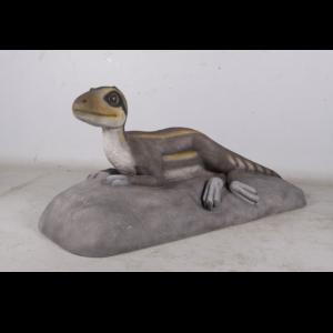 H-170203 Theropod Juvenile Lying - Dinosaurus
