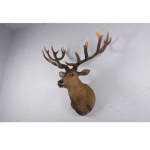 H-170216 Deer Hert Grand Stag Head - Hert