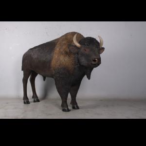 H-170229 Bison American - Bizon