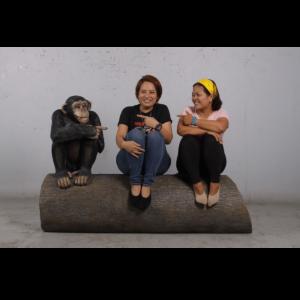 H-180038 Monkey sitting on Tree Trunk - Aap