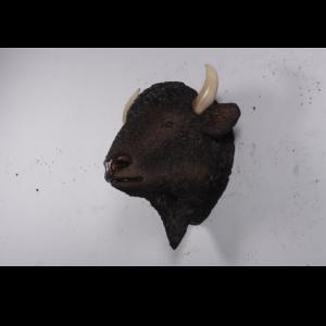 H-180039 Bison Head American - Bizon