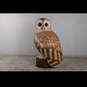 H-190022 Owl Tawny 5 ft. - Uil