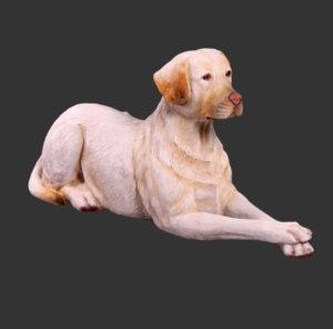 H-150251 Labrador Yellow Lying Down