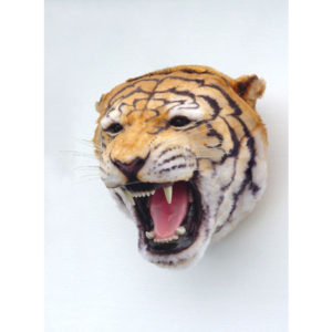 2107 Tiger Head - Tijger