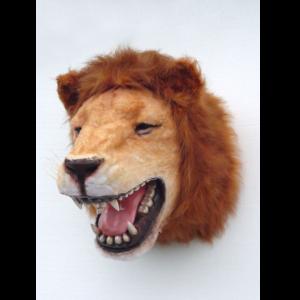 2108 Lion Head - Leeuw