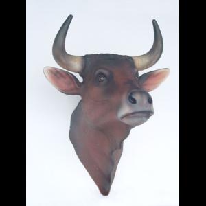 2198 Bull Head - Stier