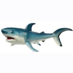2199 Shark - Haai