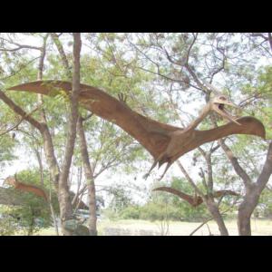 2319 Dinosaurs Pterosaurus - Dinosaurus