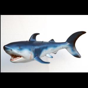 2398 Shark - Haai