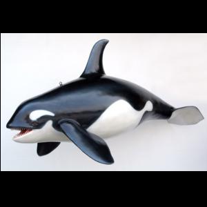 2452 Orca Whale - Orka Walvis