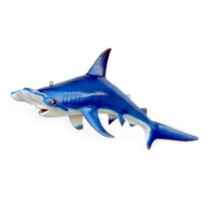 2460 Hammer Head Shark - Haai