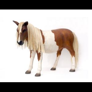 2485 Pony - Shetland Pony