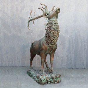 3458 Elk - Wapiti