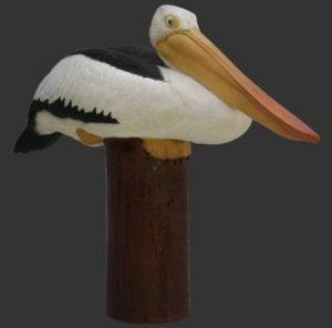 H-80119 Pelican on Post - Pelikaan
