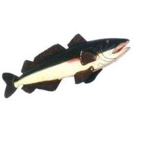 AFHAF Fish Hanging - Vis