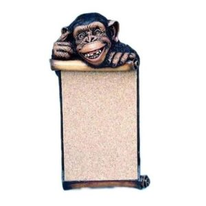 APCPM Pinboard Monkey - Aap