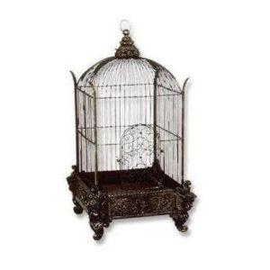 BCCOB Birdcage Conservatory - Vogelkooi
