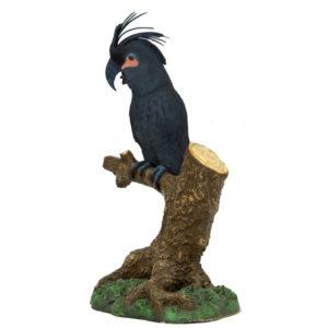 BPC-1000 Black Palm Cockatoo - Kaketoe