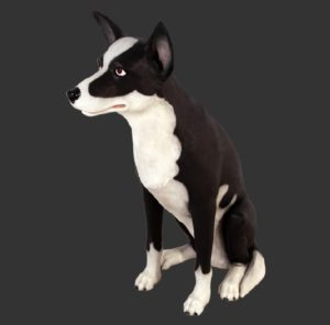 H-20504 Sheepdog - Bordercollie