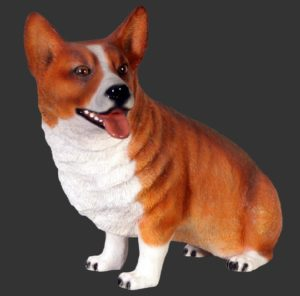 H-120029 Corgi Dog Sitting