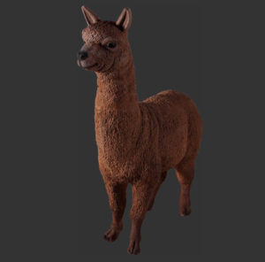 H-80074 Alpaca