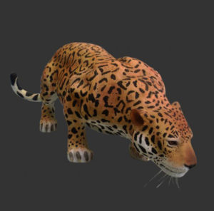 H-80110 Jaguar