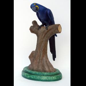 HM-1000 Hyacinth Macaw - Papegaai