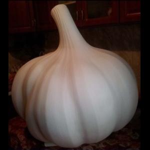 I-80 Garlic - Knoflook - 100 cm