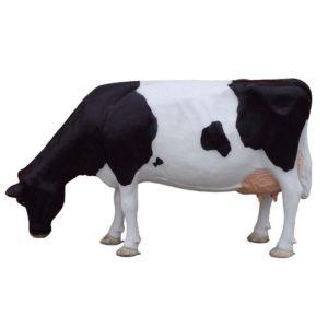 G-168 XXL Cow Head Down - Koe