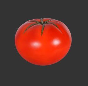 H-130053 Tomato - Tomaat - 35 cm
